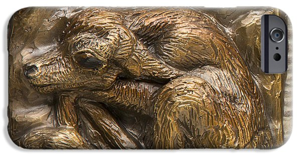 Western Reliefs iPhone Cases - Newborn Pronghorn in Golden Patina iPhone Case by Dawn Senior-Trask