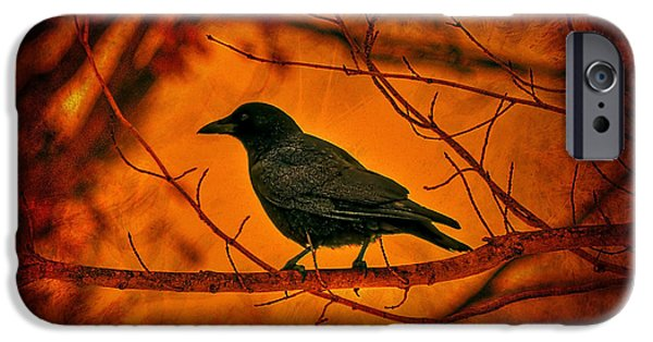 Crows iPhone Cases - Night Guard iPhone Case by Evelina Kremsdorf