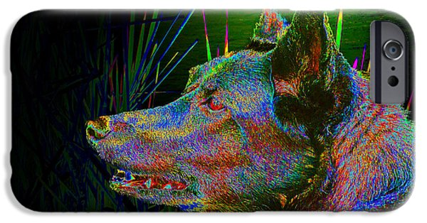 Dog Close-up iPhone Cases - Night Hunter iPhone Case by Donald  Erickson