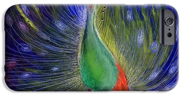 Peacock iPhone Cases - Night of Light iPhone Case by Nancy Moniz