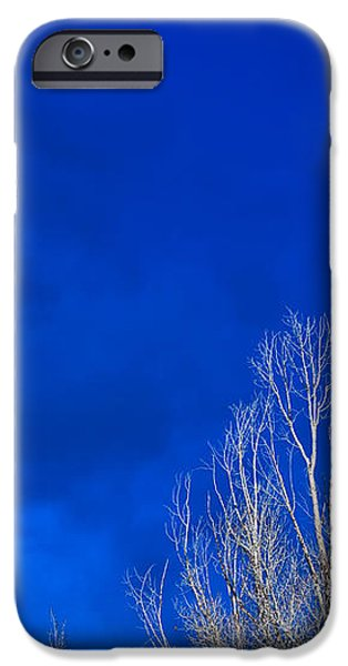 Night Sky iPhone Case by Steve Gadomski