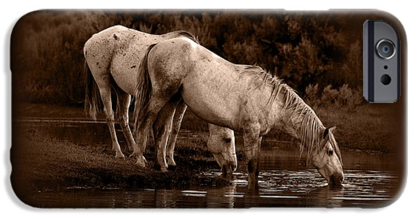 Horse iPhone Cases - Night Thirst iPhone Case by Marilyn Gregory