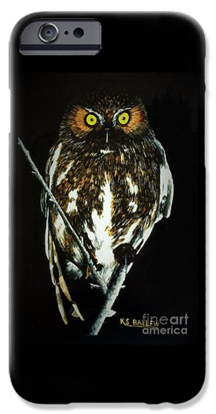 Flight iPhone Cases - Night Vigil iPhone Case by Kevin Ballew