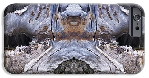Pines iPhone Cases - North Woodsmen iPhone Case by Rebecca Titus-Taylor