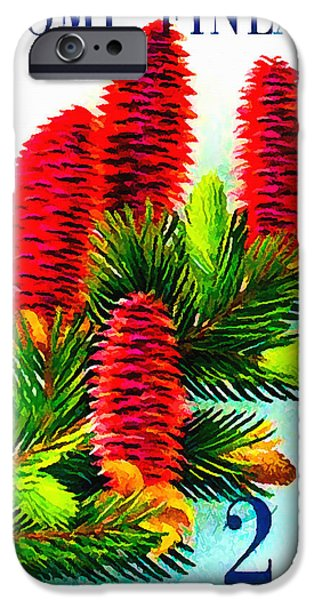 Cut-outs iPhone Cases - Norway European Spruce Picea abies iPhone Case by Lanjee Chee