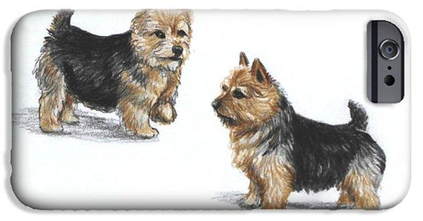Breeder iPhone Cases - Norwich Terrier breed iPhone Case by Daniele Trottier