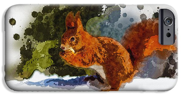 Tree Art Print iPhone Cases - Not much goes on in the mind of a squirrel iPhone Case by Don Kuing