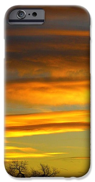 November Sunset iPhone Case by James BO  Insogna