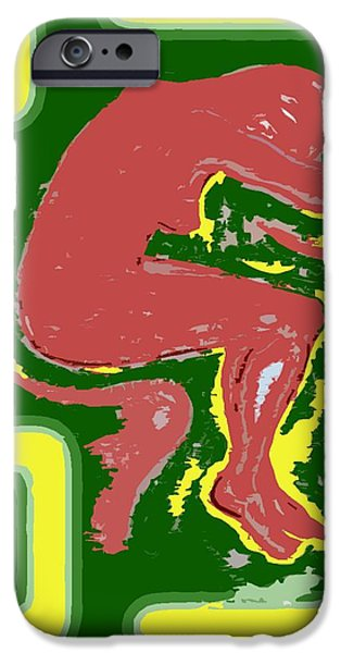 NUDE 17 iPhone Case by Patrick J Murphy