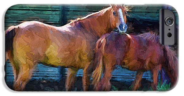 Horse iPhone Cases - Numbers and Bella iPhone Case by Shannon Story