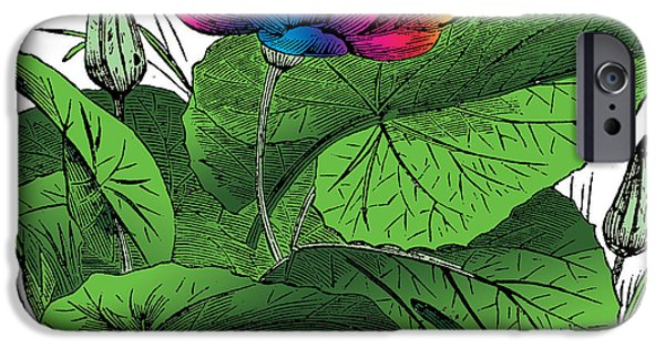 Outmoded iPhone Cases - Nymphaea iPhone Case by Eric Edelman