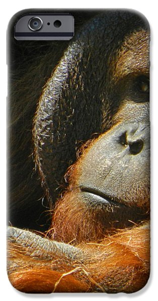 Orangutan Digital Art iPhone Cases - Observing From A Distance iPhone Case by Emmy Marie Vickers