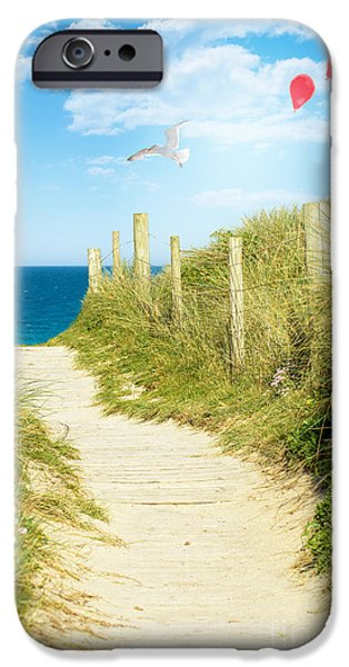 Flying Seagull iPhone Cases - Ocean Path In Cornwall iPhone Case by Amanda And Christopher Elwell