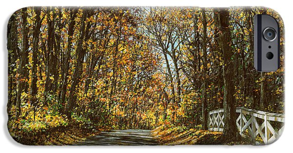 Fall iPhone Cases - October Backroad iPhone Case by Doug Kreuger