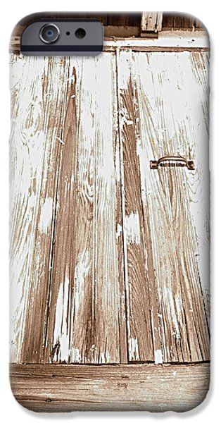 Old Basement Doors iPhone Case by Colleen Kammerer