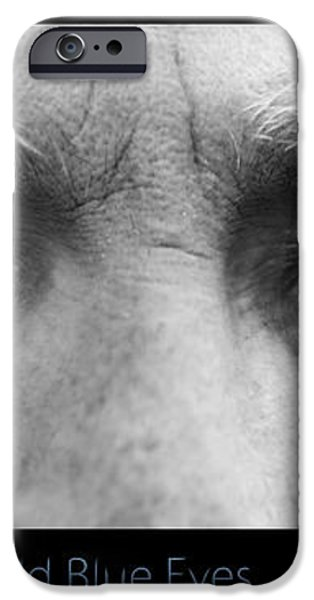 Old Blue Eyes Poster Print iPhone Case by James BO  Insogna
