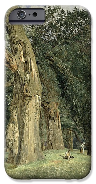 Garden Scene iPhone Cases - Old elms in Prater iPhone Case by Ferdinand Georg Waldmuller