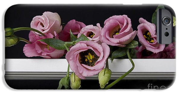 Board iPhone Cases - Old Fashion Romance.. iPhone Case by Nina Stavlund