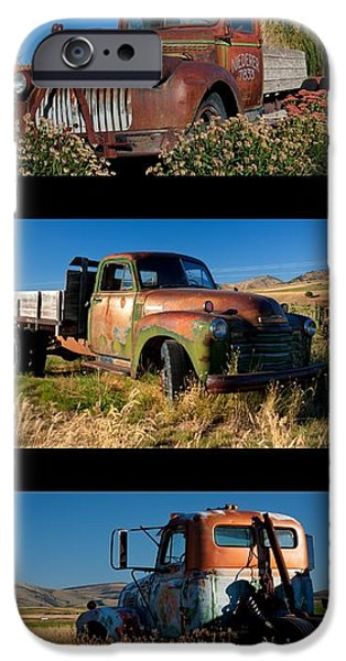 Old Guys Trio 4 iPhone Case by Idaho Scenic Images Linda Lantzy