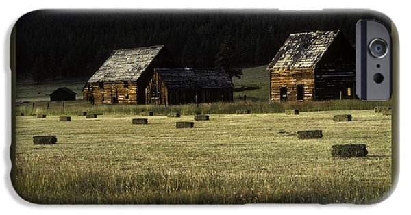 Hayfield iPhone Cases - Old Homestead-Potomac Montana iPhone Case by Thomas Schoeller