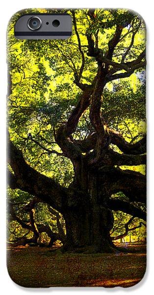 Old old Angel Oak in Charleston iPhone Case by Susanne Van Hulst