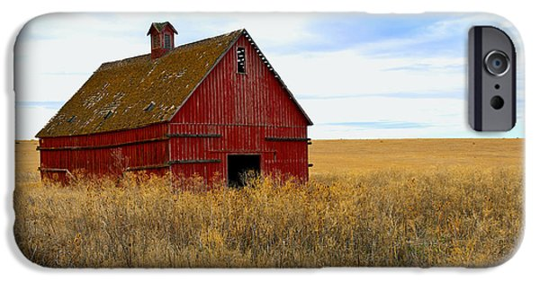 Old Barn iPhone Cases - Old Red Barn iPhone Case by Storm Smith