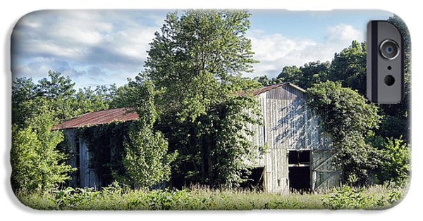 Old Barn iPhone Cases - Old Tobacco Barn iPhone Case by Cricket Hackmann