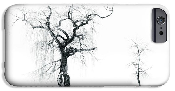 Winter Storm iPhone Cases - Old Tree Young Tree iPhone Case by Tara Turner