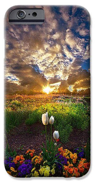 Meadow iPhone Cases - On Earth as it is In Heaven iPhone Case by Phil Koch