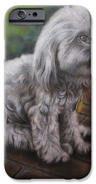 Dogs iPhone Cases - On the Bricks iPhone Case by Jonathan Anderson