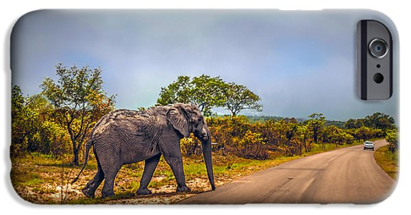 Elephants iPhone Cases - On the Road Again iPhone Case by Maria Coulson