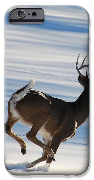 On the Run iPhone Case by Todd Hostetter