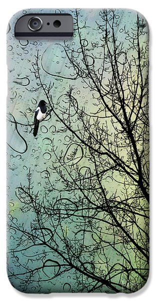 Fable iPhone Cases - One for Sorrow iPhone Case by John Edwards