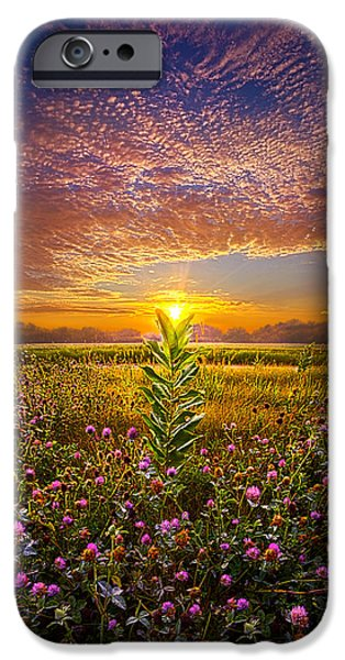 Snake iPhone Cases - One Last Kiss iPhone Case by Phil Koch