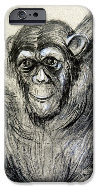 Animal Drawings iPhone Cases - One of a kind Original Chimpanzee Monkey drawing study made in charcoal iPhone Case by Marian Voicu