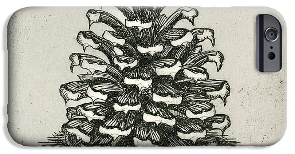 Drypoint iPhone Cases - One Pinecone iPhone Case by Charles Harden
