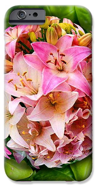 Asiatic Lily iPhone Cases - One Pink Lily iPhone Case by Caroline Czelatko
