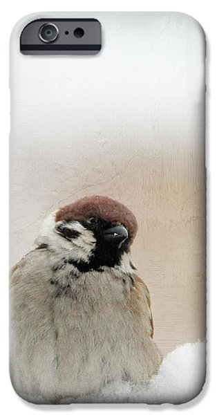 Animal Picture iPhone Cases - One Sparrow In Snow iPhone Case by Heike Hultsch