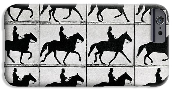 Reining iPhone Cases - One Stride in Eleven Phases iPhone Case by Eadweard Muybridge