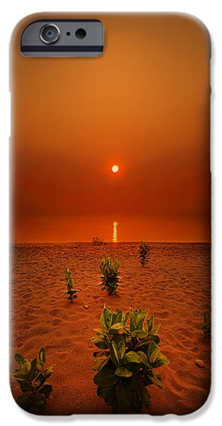 Morning iPhone Cases - Only But A Few iPhone Case by Phil Koch
