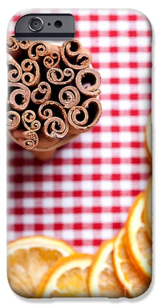 Slices iPhone Cases - Orange and Cinnamon iPhone Case by Nailia Schwarz