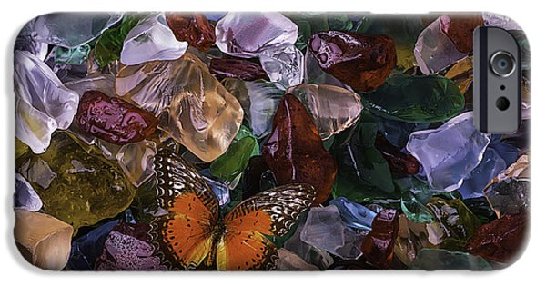 Buy iPhone Cases - Orange Butterfly On Sea Glass iPhone Case by Garry Gay