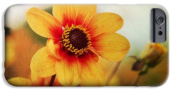 Flora Mixed Media iPhone Cases - Orange Dahlia  iPhone Case by Angela Doelling AD DESIGN Photo and PhotoArt