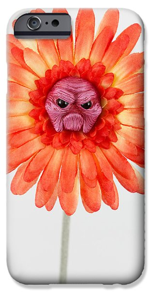 Petals Sculptures iPhone Cases - Orange grumpy flower iPhone Case by Michael Palmer