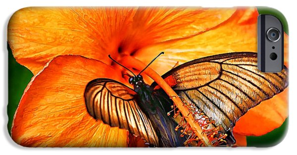 Close Up Floral iPhone Cases - Orange Hibiscus Butterfly 1 iPhone Case by Bill Caldwell -        ABeautifulSky Photography
