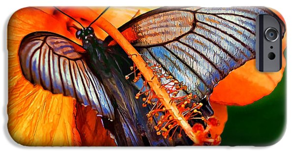 Close Up Floral iPhone Cases - Orange Hibiscus Butterfly 2 iPhone Case by Bill Caldwell -        ABeautifulSky Photography