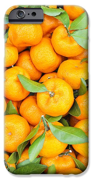 Recently Sold -  - Crops iPhone Cases - Oranges. iPhone Case by Parawat Isarangura Na Ayudhaya