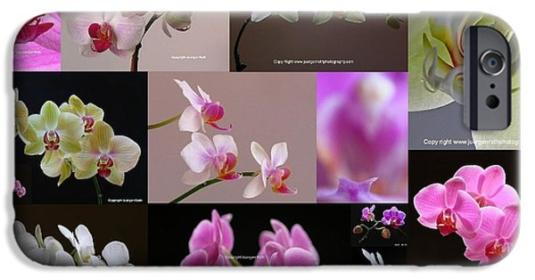 White Orchid iPhone Cases - Orchid Fine Art Flower Photography iPhone Case by Juergen Roth