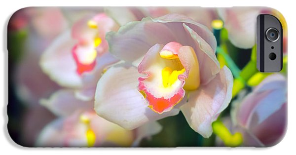 Graphic Design iPhone Cases - Orchids Restyled iPhone Case by Terry Weaver