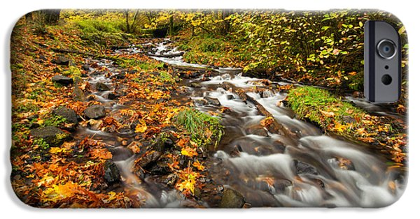 Autumn iPhone Cases - Oregon Autumn Beauty iPhone Case by Mike  Dawson